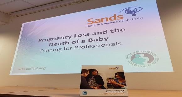 Sands Training for Multi-disciplinary Groups