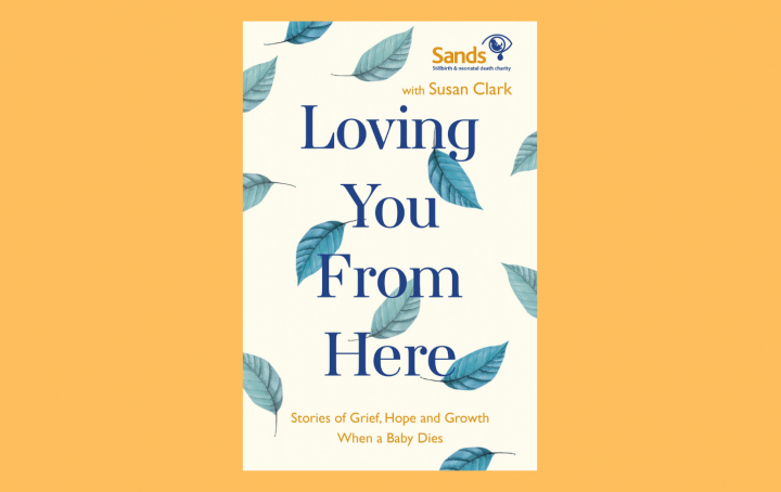 Loving you from here book